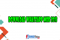 Download Whatsapp MOD 2018